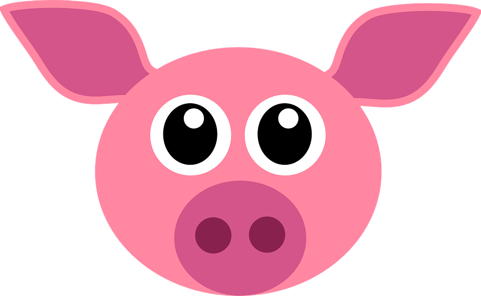 Free photo Pig Happy Pig Animals Nature Furna Alp Rona Sow.