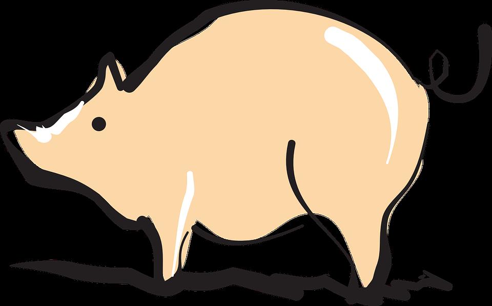 Free vector graphic: Pig, Barn, Farm, Shiny, Animal.