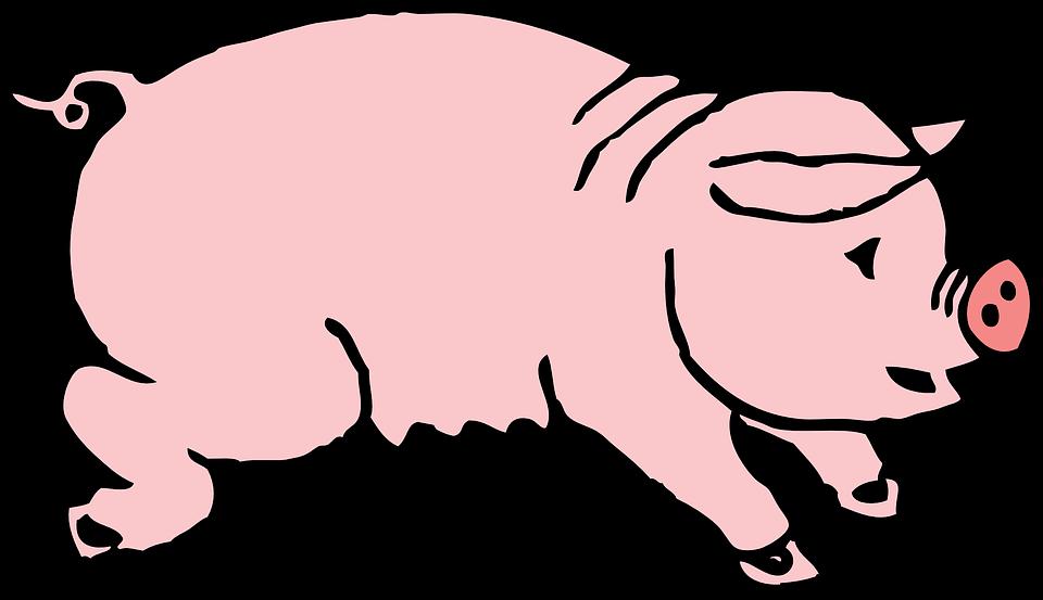 Free vector graphic: Pig, Hog, Animal, Mammal, Sow.