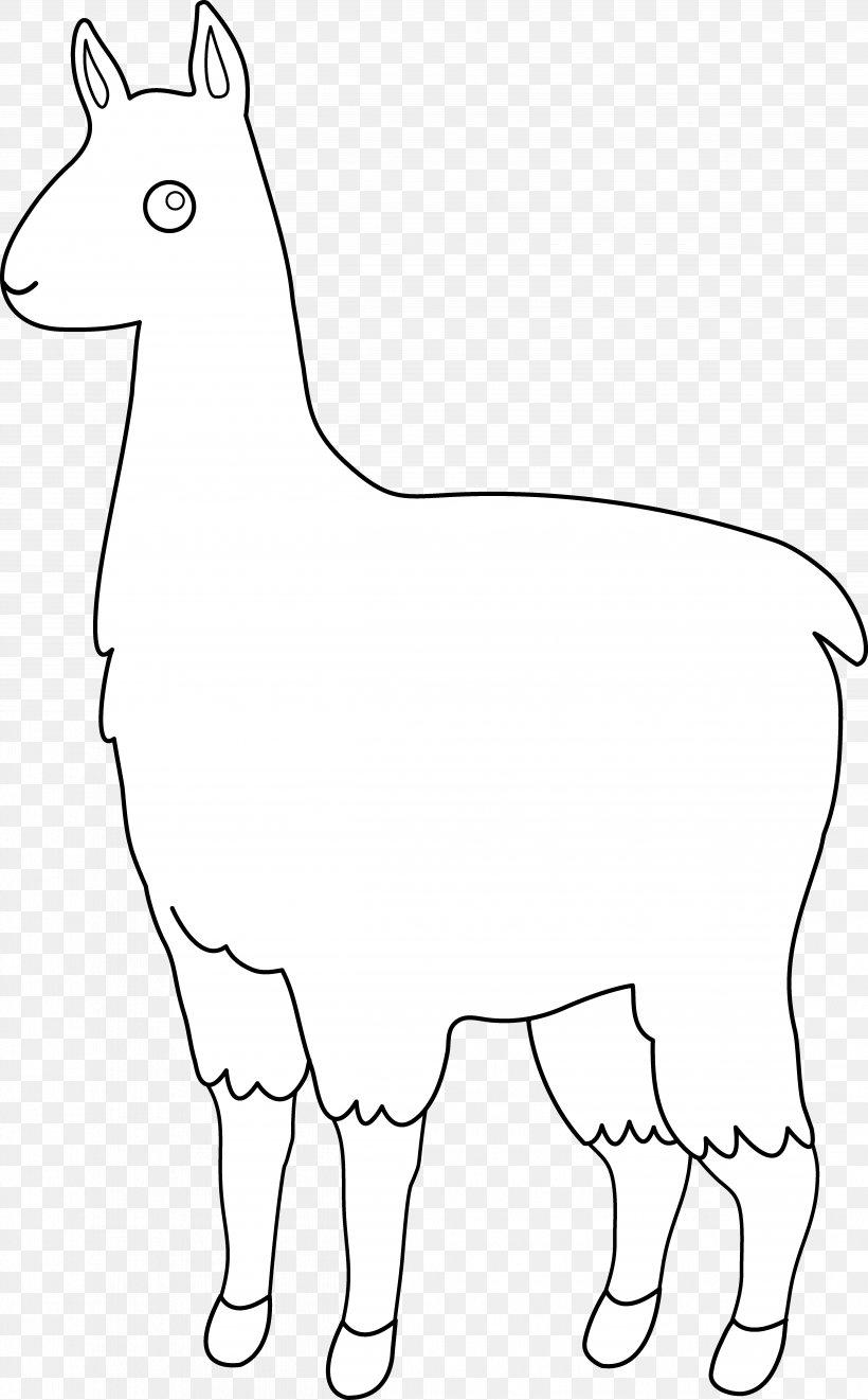 Llama Alpaca Line Art Clip Art, PNG, 4994x8047px, Llama.