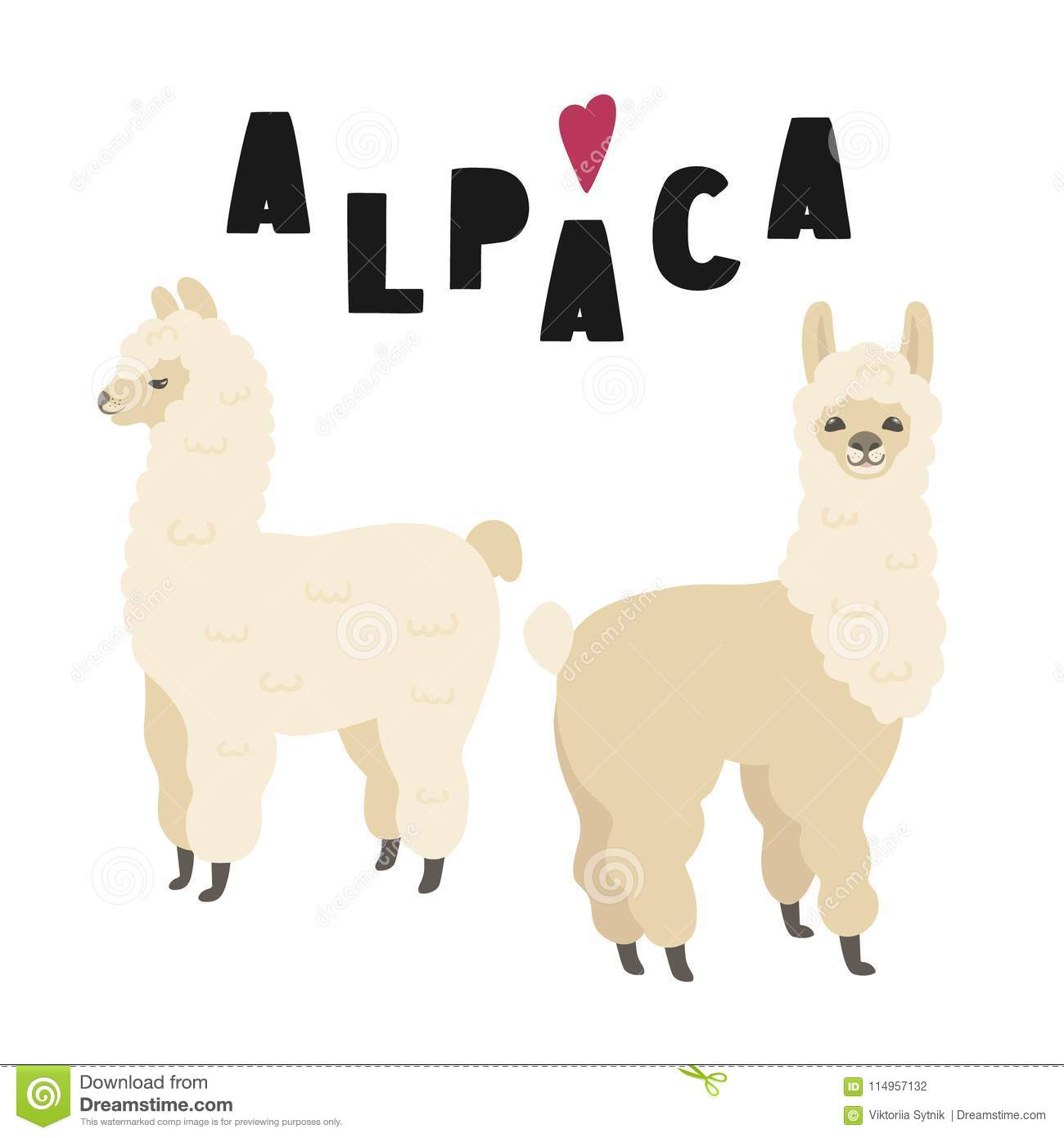 Two Cute Alpacas Illustration With Lettering, Isolated On White.