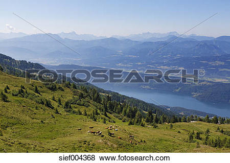 Pictures of Austria, Carinthia, Nock Mountains, Millstaetter Alpe.