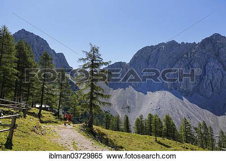 """Stock Image of """"Hochstuhl Group, Matschacher Alm mountain pasture."""