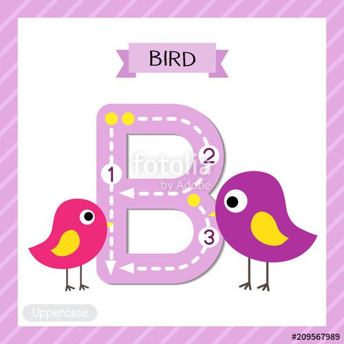 Letter B uppercase cute children colorful zoo and animals.