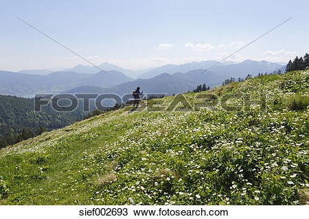Stock Photo of Germany, Bavaria, Person hiking on Gindelalmschneid.