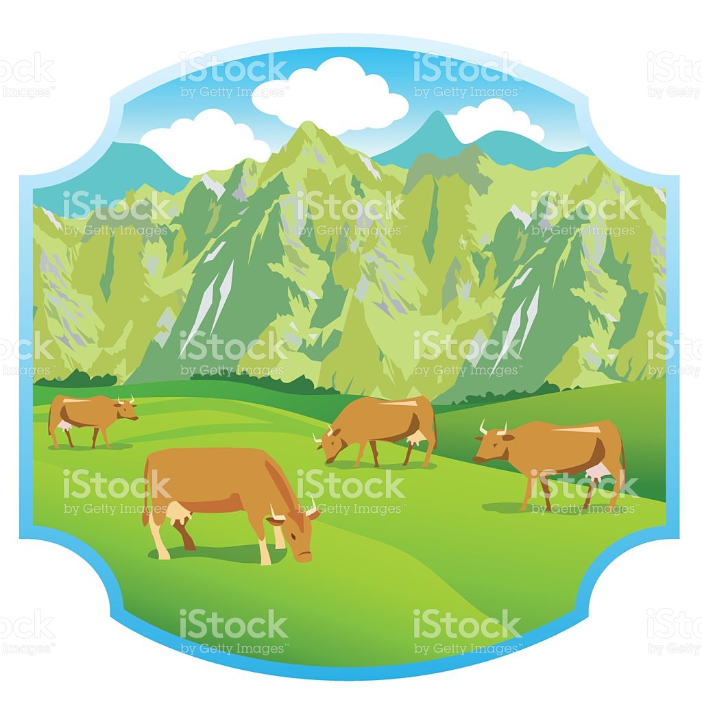Cows On The Alpine Meadows Mountains Range And Green Valley stock.