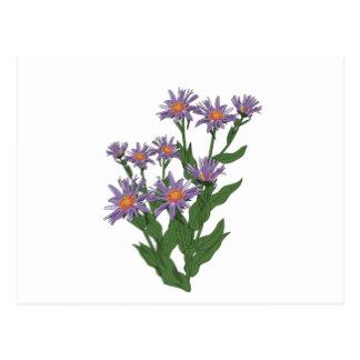 Flower Clipart Postcards.