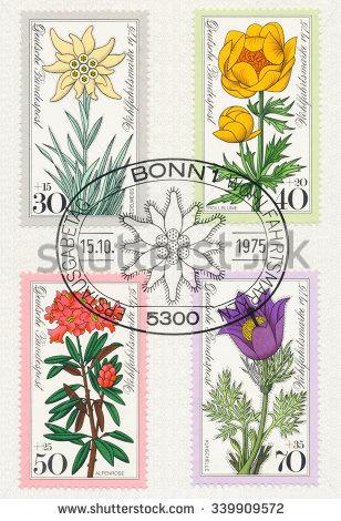 Alpine Rose Stock Photos, Royalty.