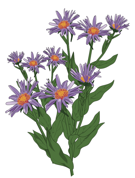 Free to Use & Public Domain Flowers Clip Art.