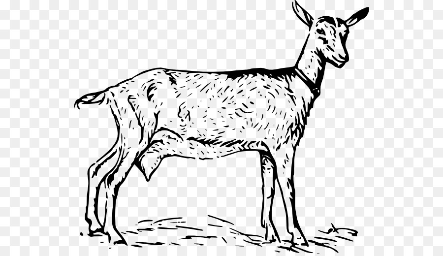 Goat Cartoon clipart.