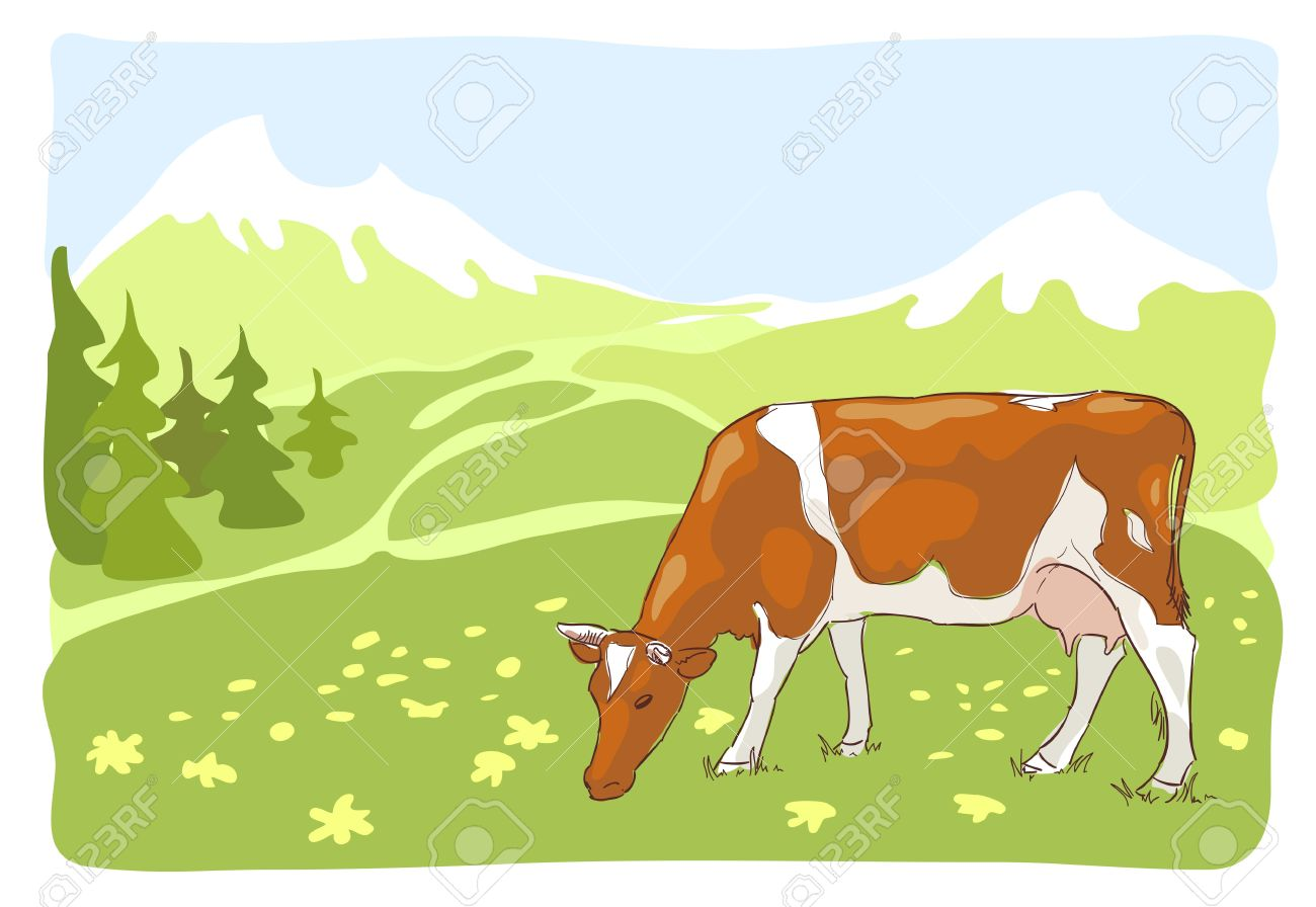 The White And Red Cow Is Grazed On The Alpine Meadow. Vector.