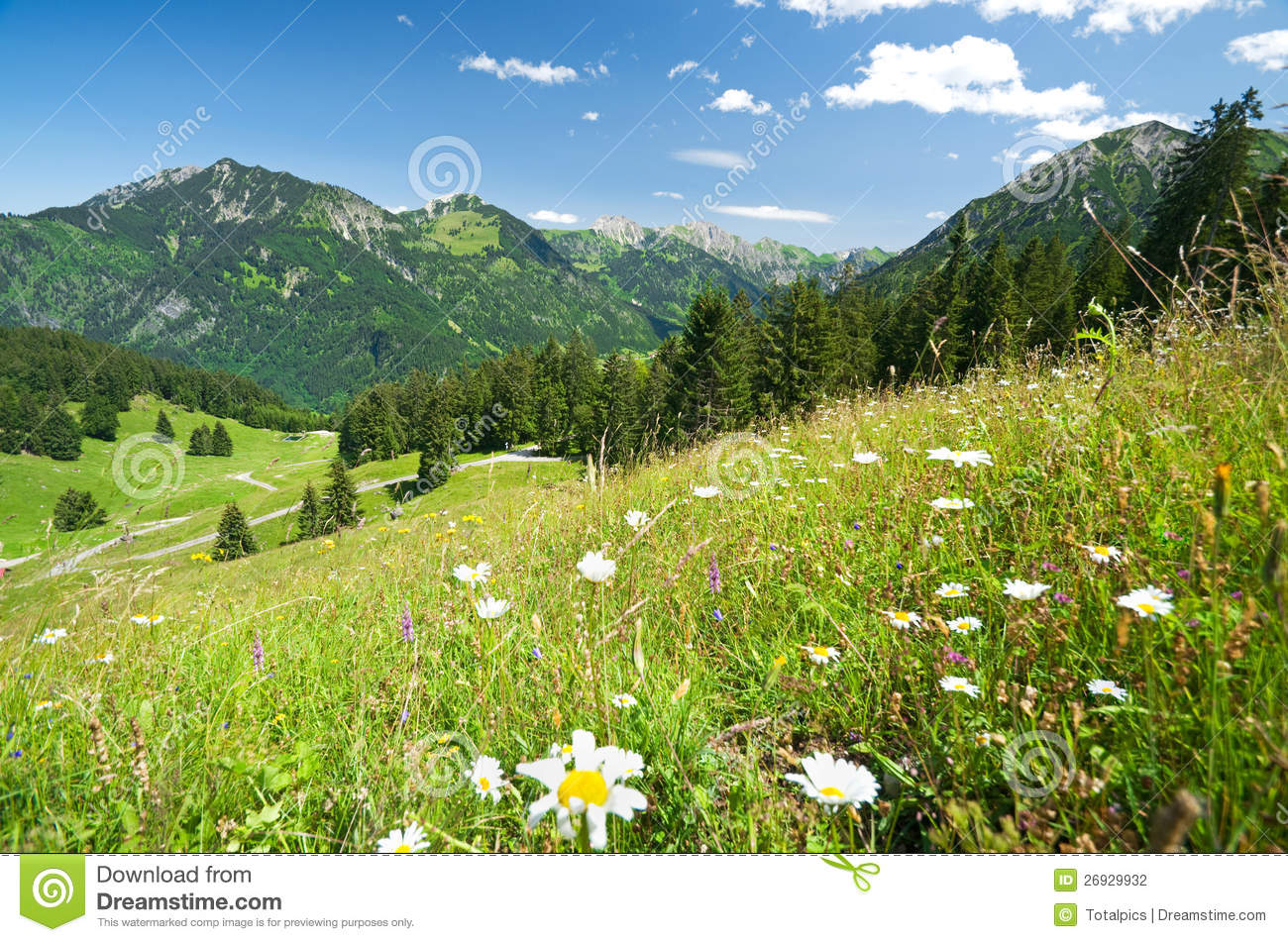 Alpine Meadow In Germany Allgaeu Stock Photography.