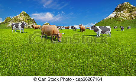 Stock Illustration of Dairy cows on alpine pasture Close up.