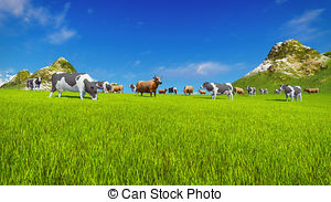 Stock Illustrations of Dairy cows on green alpine pasture.