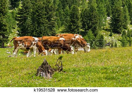 Alpine pasture clipart #2