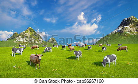 Stock Illustration of Dairy cows graze on alpine pasture.