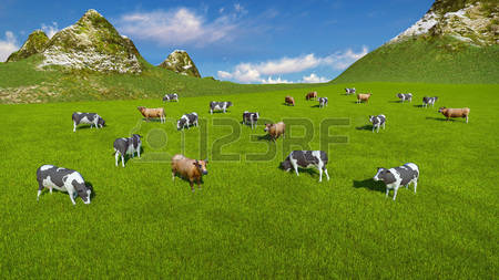 4,875 Alpine Pasture Stock Vector Illustration And Royalty Free.