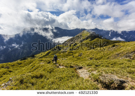 Alpine Rose Banco de imágenes. Fotos y vectores libres de derechos.