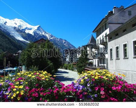 Alpine Plants Stock Photos, Royalty.