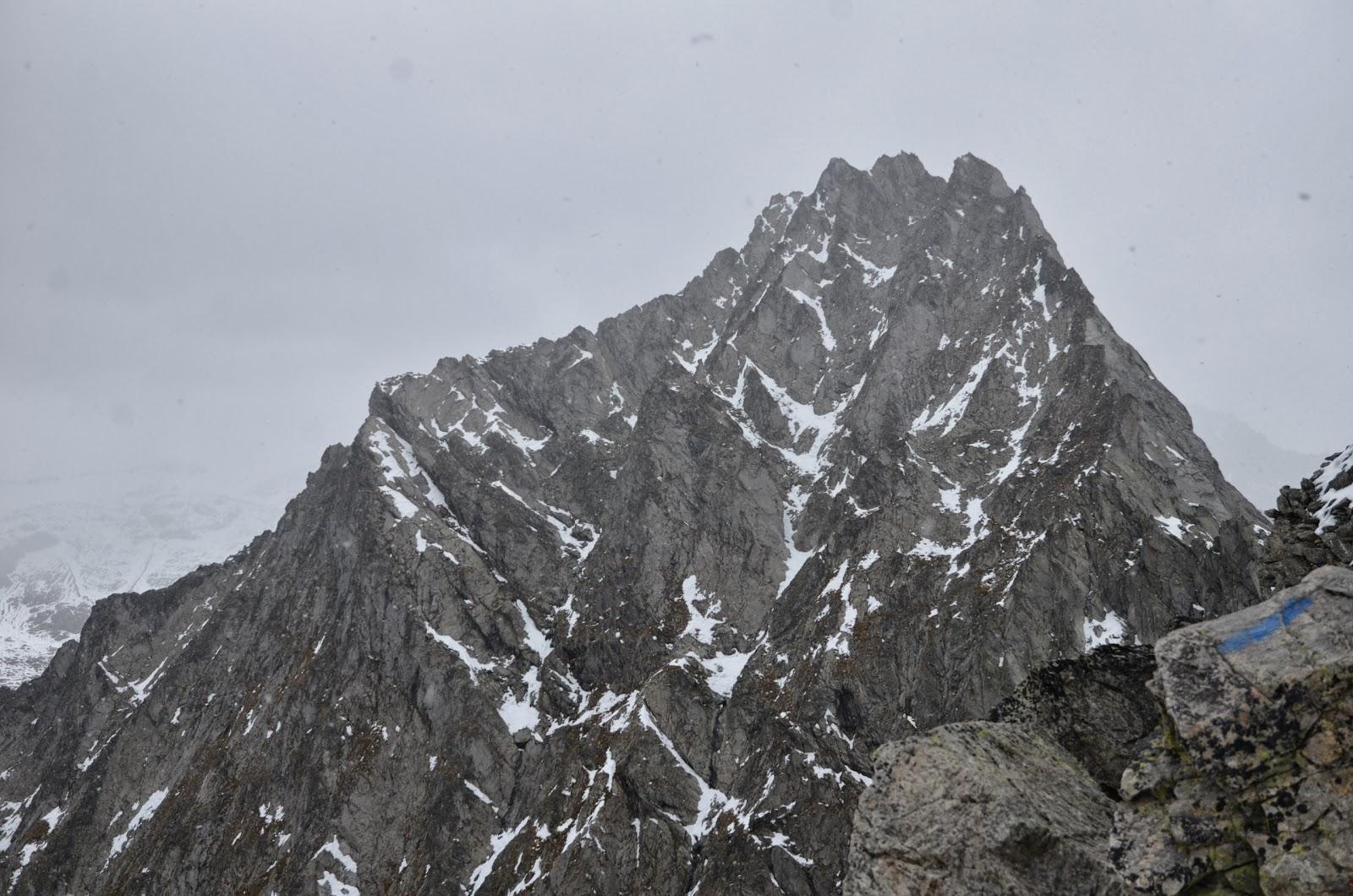 BuschnicK: Wiwannihorn (3001m) via Steinadler (5b, 530m).