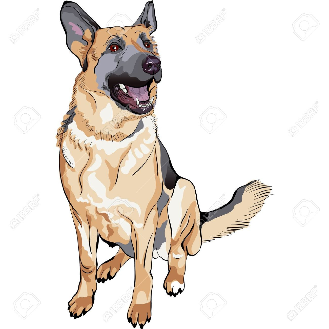 Clipart german shepherd dog.