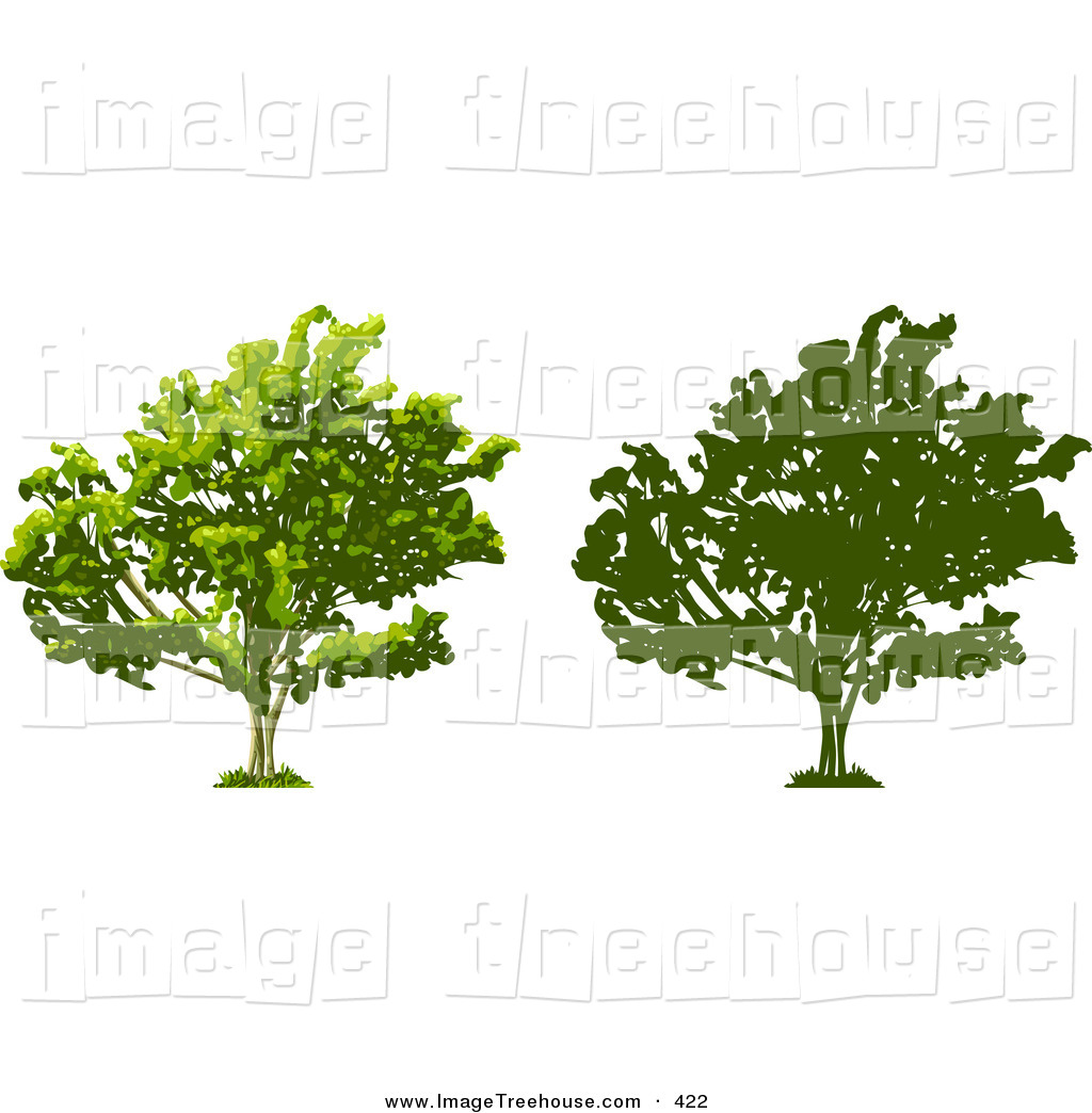 Clipart of a Tree Thick with Growing Foliage, Also Shown in.