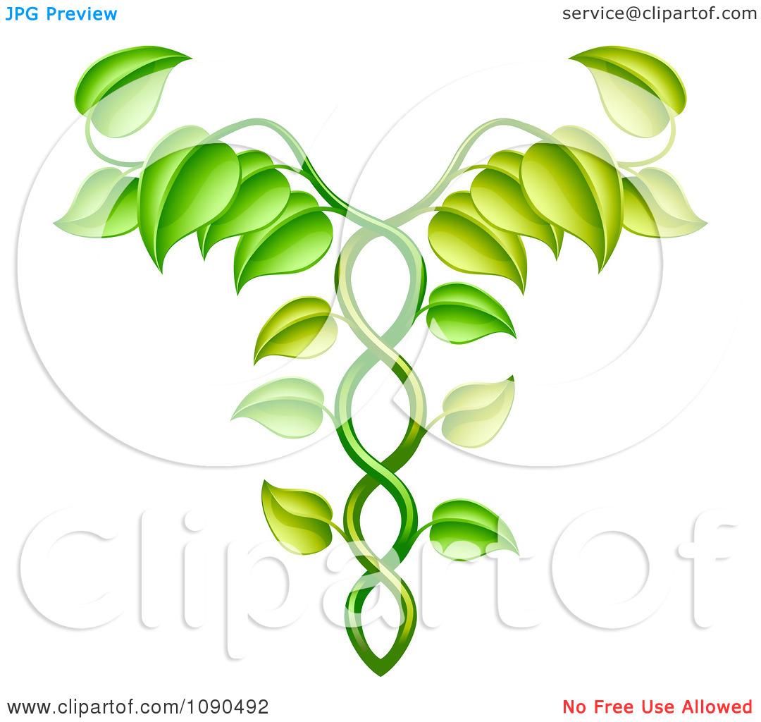 Clipart Green Vine Forming An Alternative Medicine Caduceus.