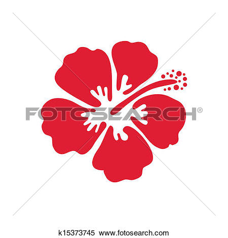 Clipart of Vector illustration of hibiscus flower k15373745.