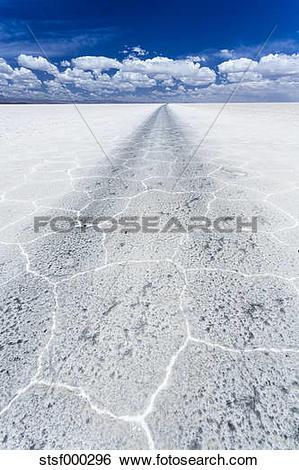 Stock Images of South America, Bolivia, Atacama, Altiplano, Salar.
