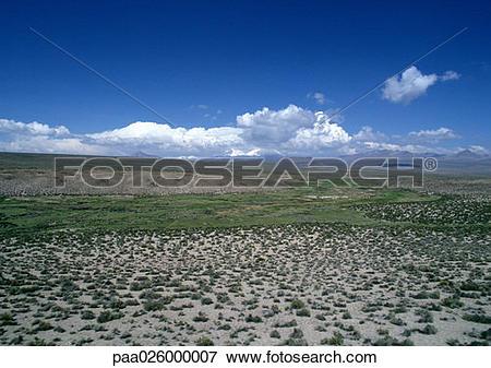 Picture of Chile, El Norte Grande, Altiplano, Lauca National Park.