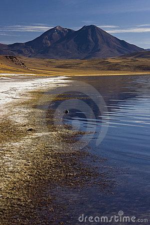 Altiplanic Lagoon.