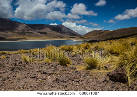 Atacama Region Stock Images, Royalty.
