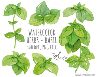 Watercolor Design cliparts taxtures by SwiejkoForPrint on Etsy.