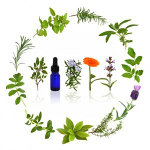 Can Herbs Cure Anxiety?.