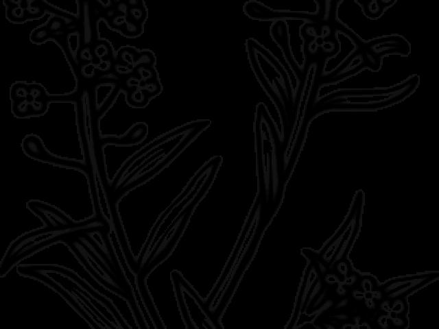 Alyssum Flower Clip Art.