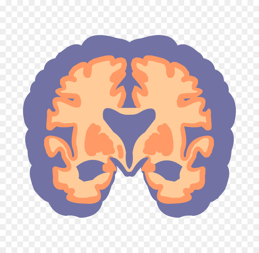 Cartoon Brain png download.
