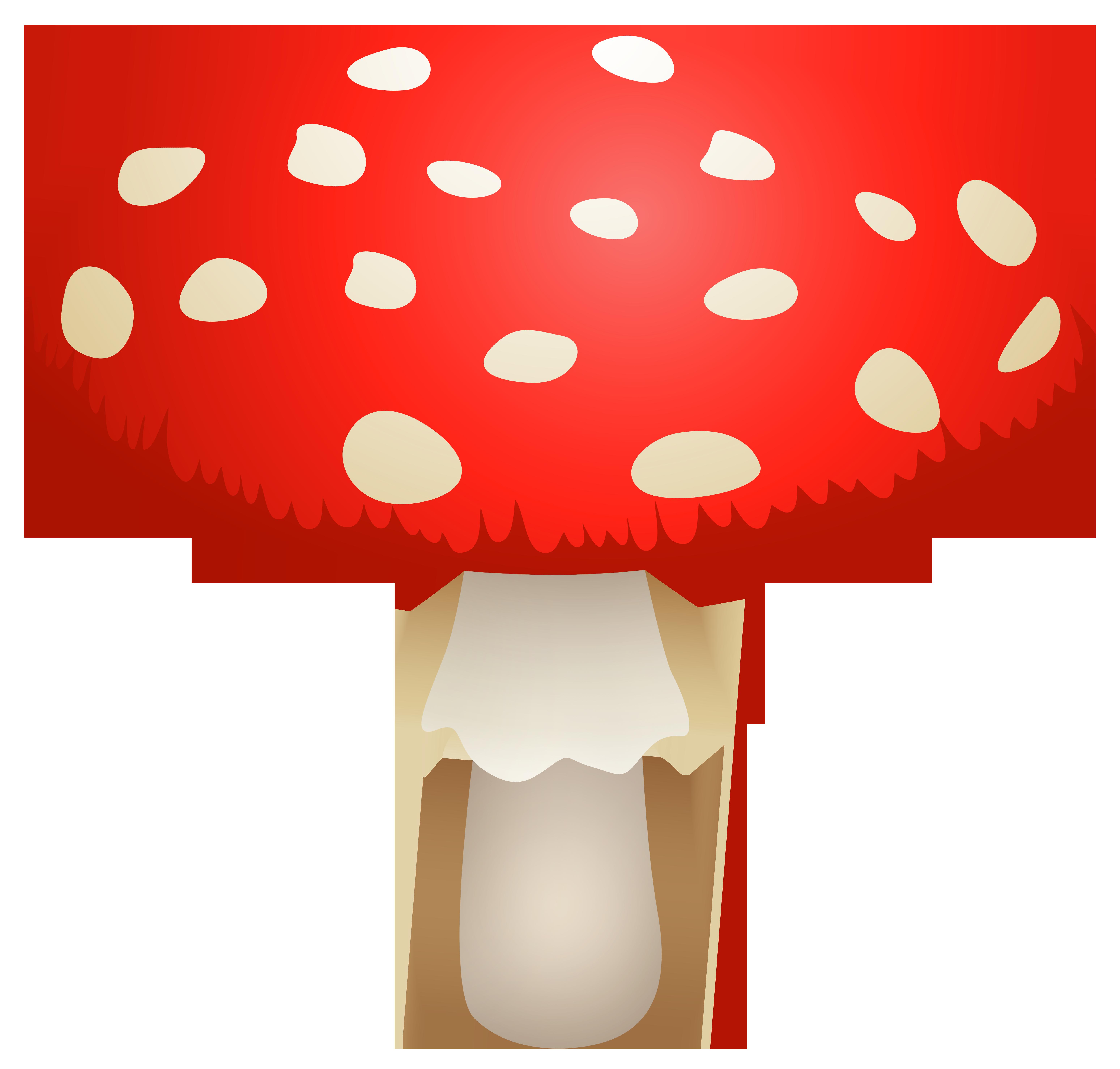 Mushroom Amanita Muscaria PNG Clipart.