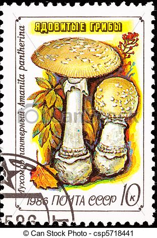 Clipart of Canceled Soviet Russia Postage Stamp Amanita Pantherina.
