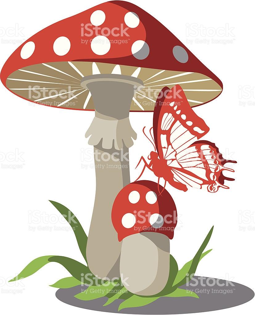 Amanita Danger Mushroom And Butterfly 004 stock vector art.