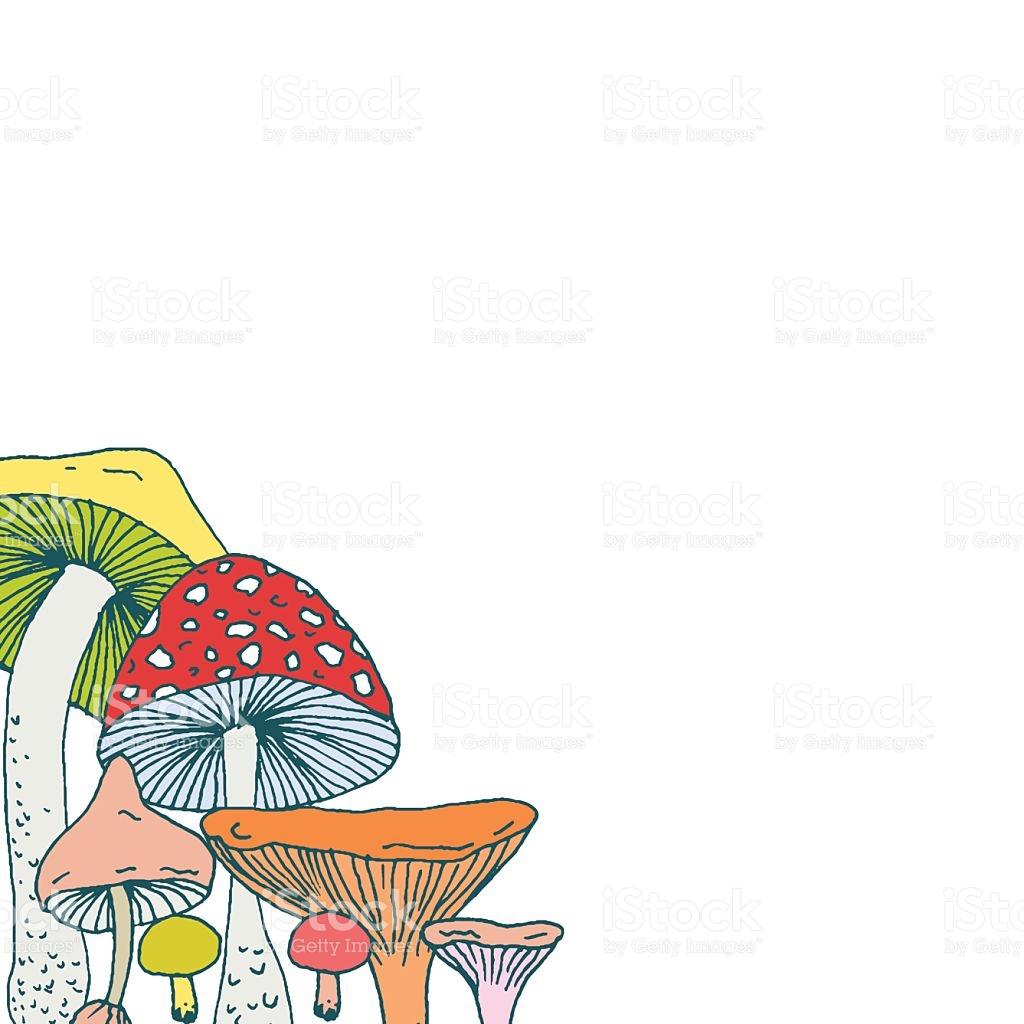 Decorative Frame Design Corner With Forest Mushrooms stock vector.