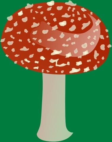 Amanita Toxic Mushroom clip art Free vector in Open office drawing.