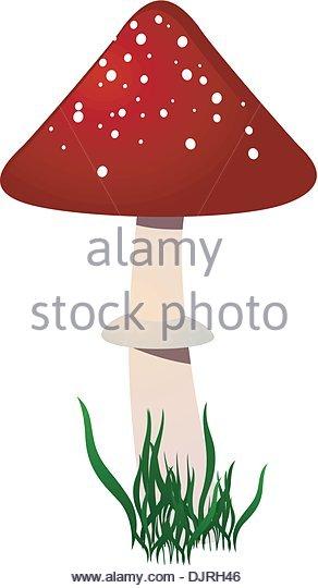 Amanita Family Stock Photos & Amanita Family Stock Images.