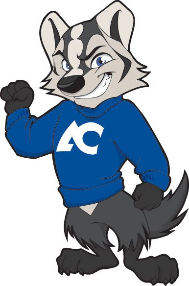 Billy Badger, official mascot of Amarillo College, Amarillo.