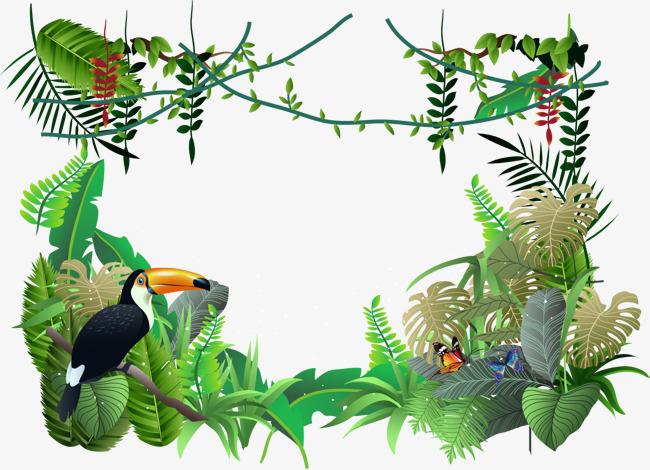 Amazon Rainforest Clipart.