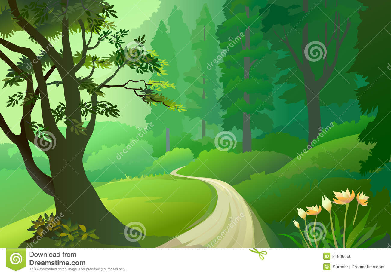 the forest background