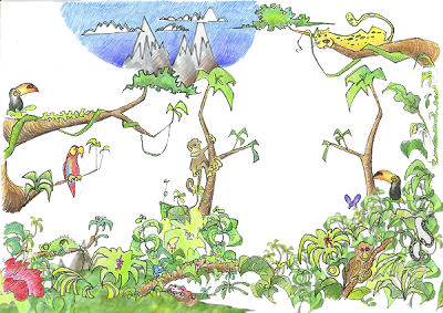 amazonia clipart clipground amazon rainforest clipart amazon clip art cooking