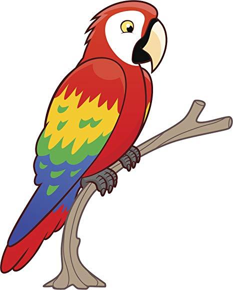Amazon.com: Divine Designs Cool Perched Rainbow Macaw Parrot.