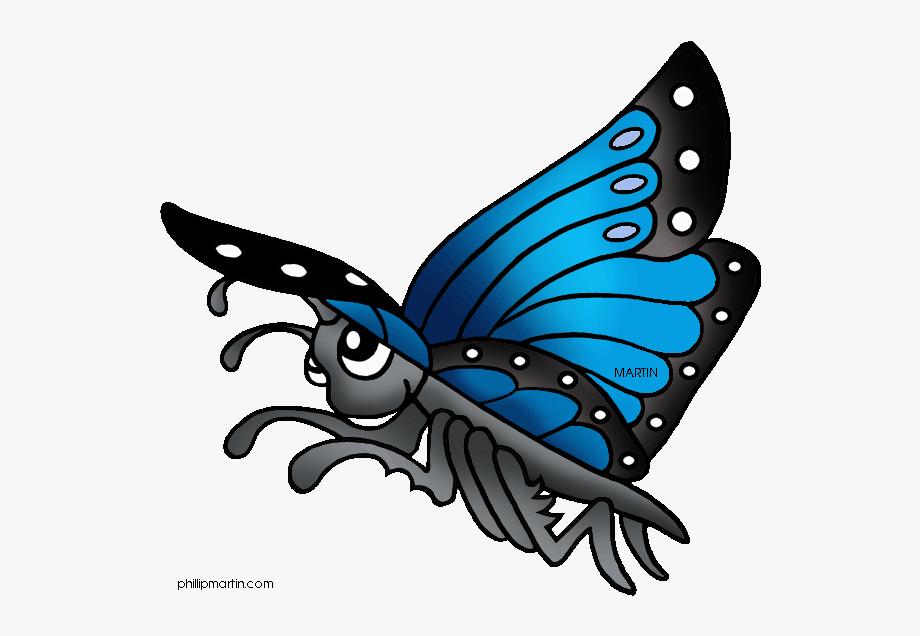 Rainforest Animals Clip Art By Phillip Martin.