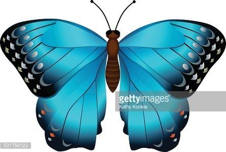 tropical rainforest blue Morpho butterfly Clipart Image.