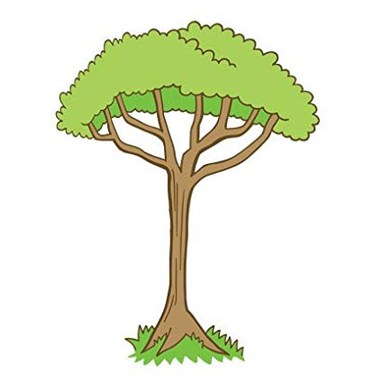 Cartoon Jungle Tree & Free Cartoon Jungle Tree.png.
